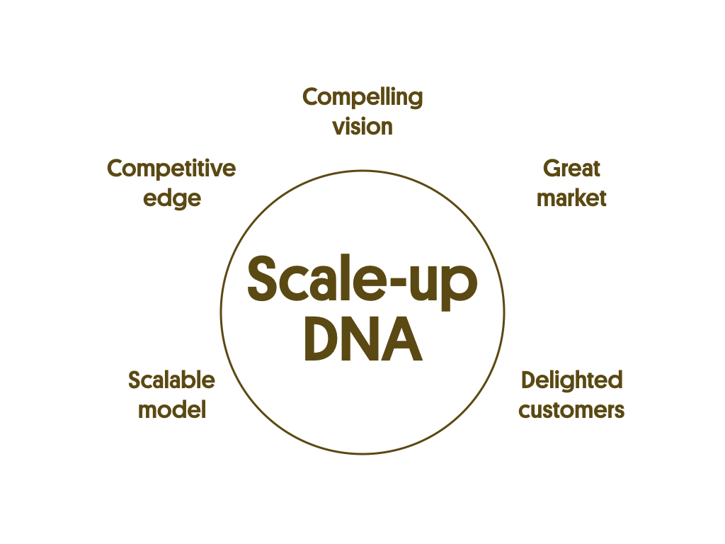 ScaleUp DNA is one of the 5 pillars of the scaling success factors