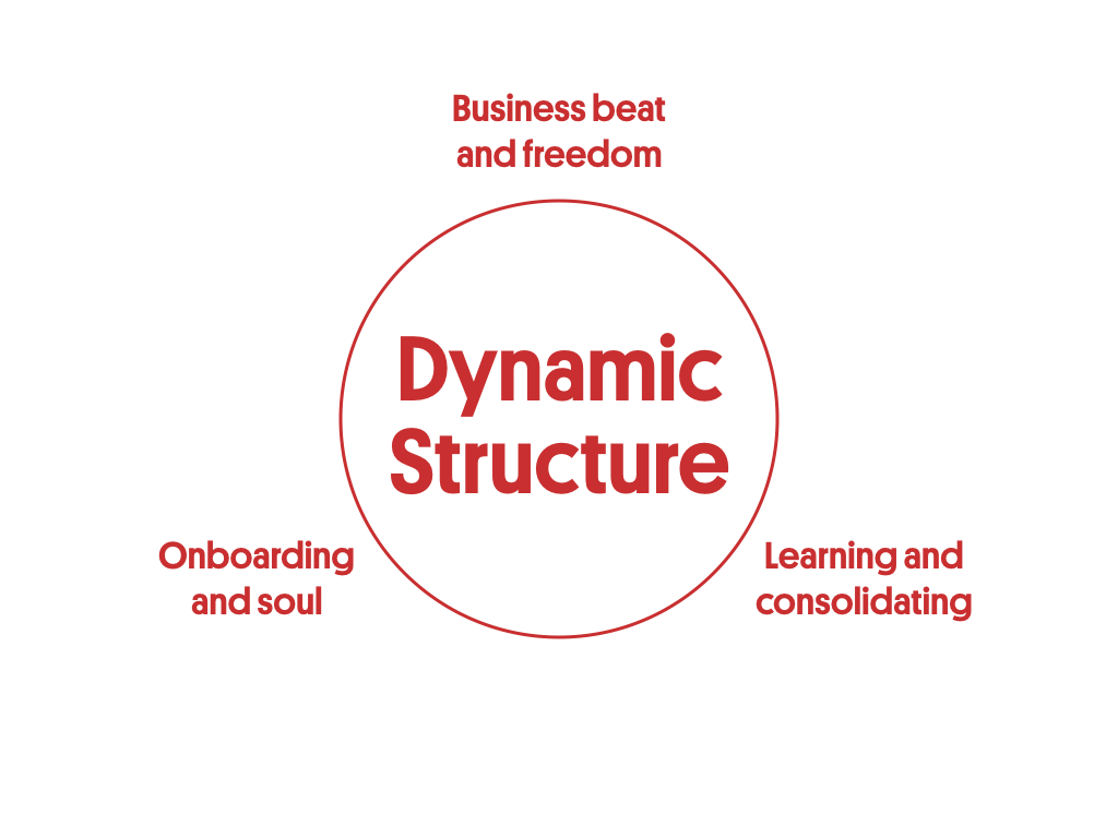 Dynamic Structure is one of the 5 pillars of the scaling success factors