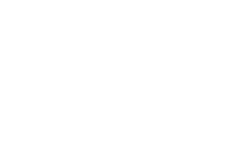 When growing from around 10 to 100 employees, a company needs to become productive – net income/employee becomes linear.