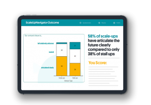 The ScaleUpNavigator allows you to get a complete overview of how you score on every scaling success factor under 20 minutes