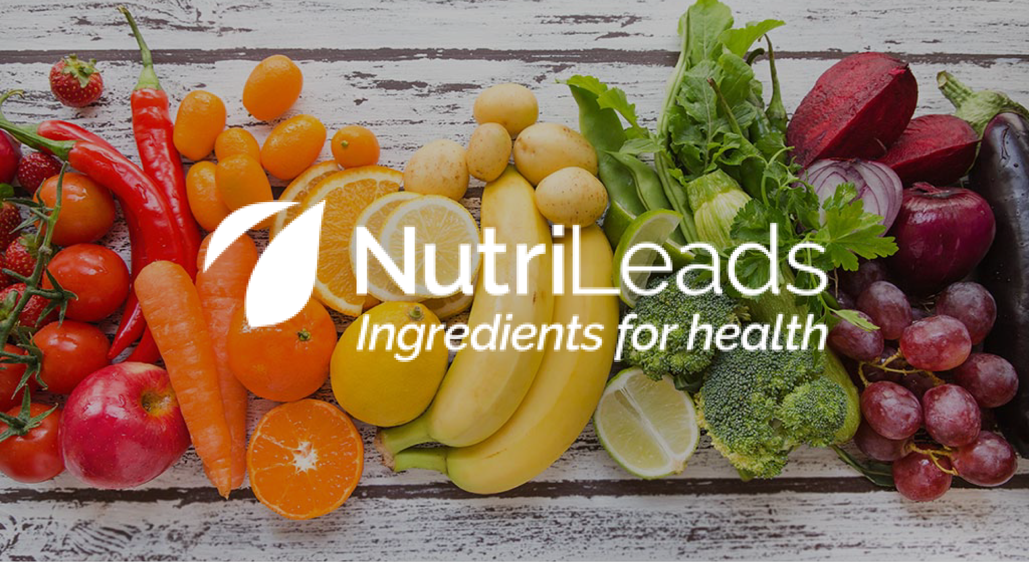 Nutrileads is one of the participants of the ScaleUpNation Food program, which focuses on upstream Agri&Food scale-ups