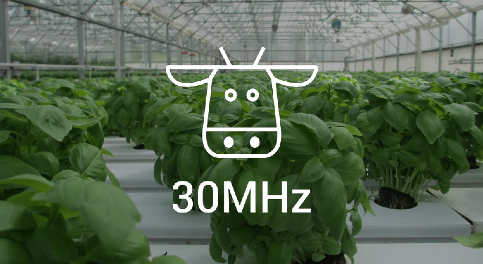 30-MHz is the data platform for crop-level insights - ScaleUpFood Class 1