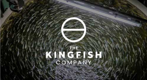 Kingfish Zeeland is one of the 125+ impact scale-ups have completed our programs